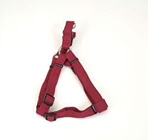 """3/8"""" SOY HARNESS CRANBERRY"""
