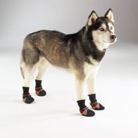 GUARDIAN GEAR DOG BOOTS