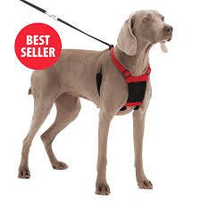 SPORN NON-PULL MESH DOG HARNESS